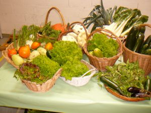 Les légumes frais et biologiques du Maraîchage de CONFIANCE Pierre Boulenger